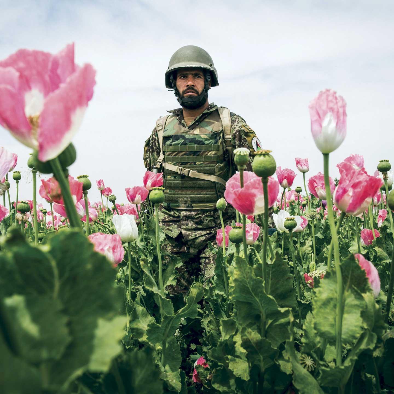 american interest in afghanistan